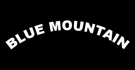 Blue Mountain Restaurant Brooklyn Ny